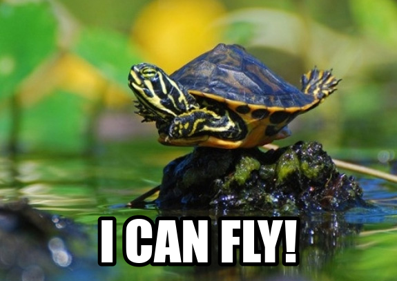 7c535c3508ed0743c7a44c8e32daf115 cute turtles generate a meme using cute turtle wants to fly