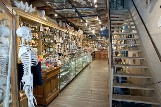 shopping in nyc best home stores city