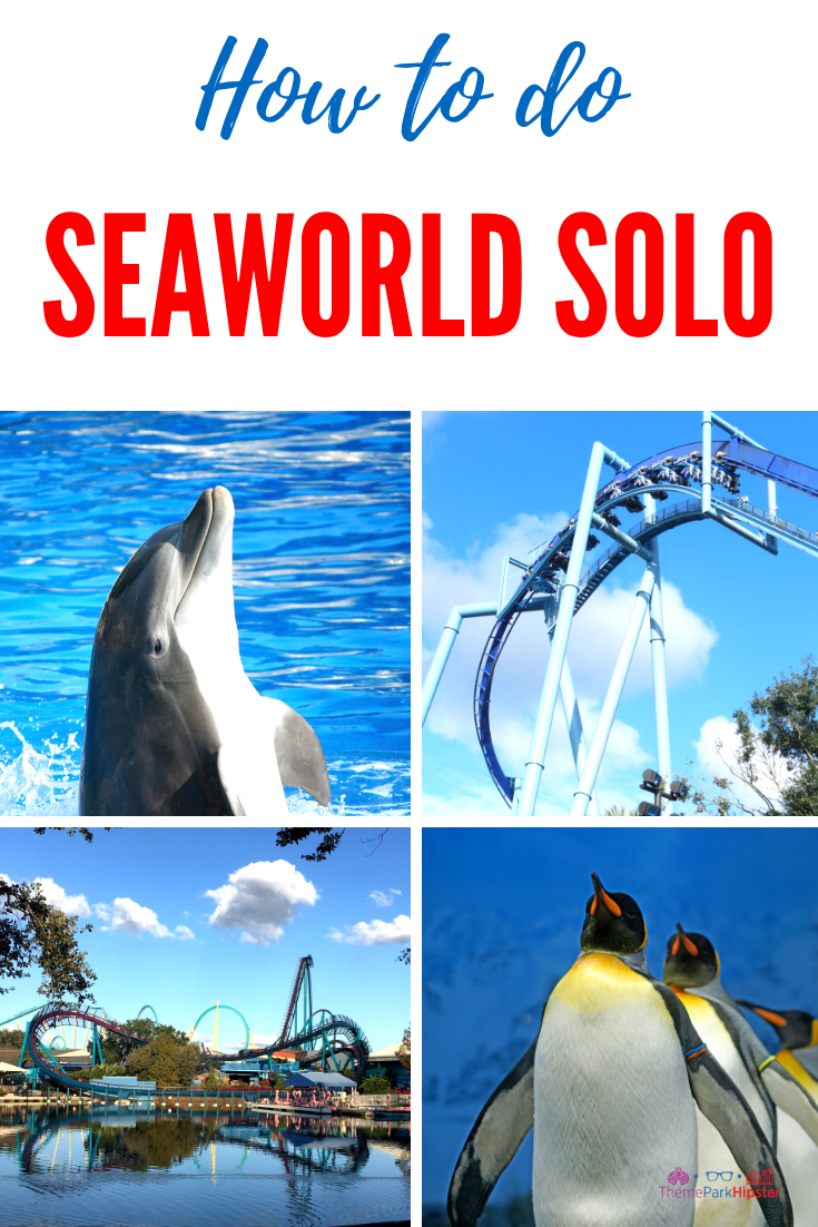 11 Proven Tactics For Doing Seaworld Alone Solo Travel Destinations Sea World Holy Land Experience Solo Travel