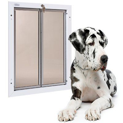 Dog Doors Gates Plexidor Weatherproof Big Dog Doors Energy