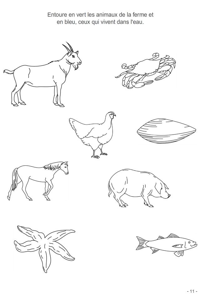 Bien connu 4-6 ans Fiche 11 : les animaux | Pour Enfants | Pinterest | Les  OE26