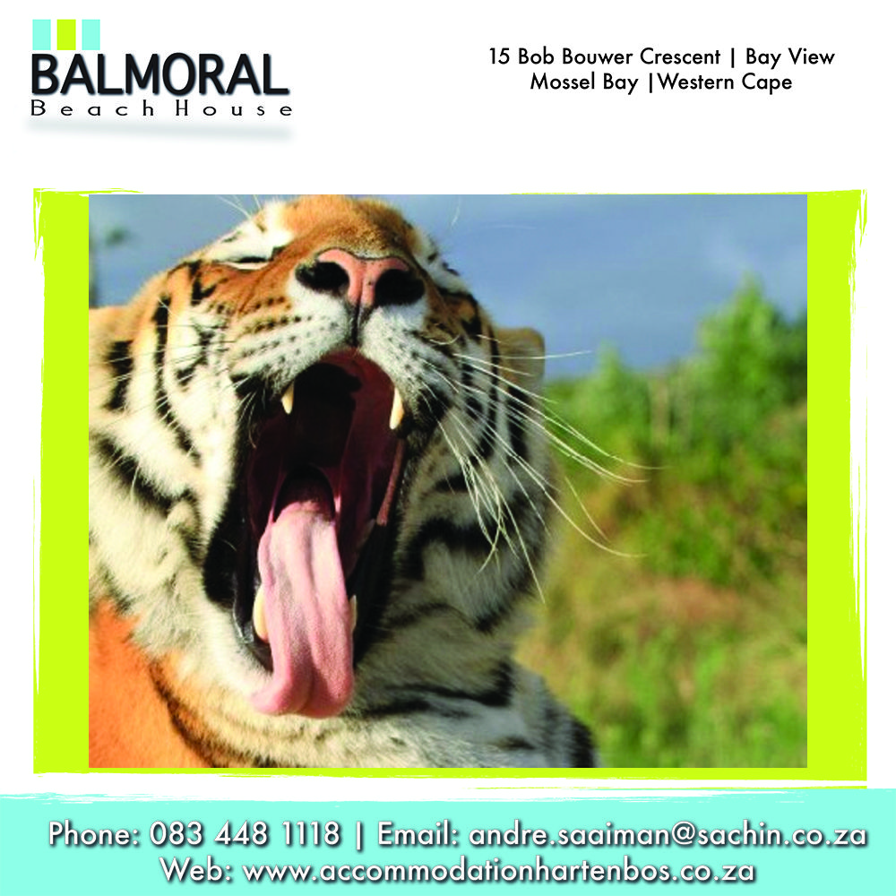 Jukani Wildlife Sanctuary is home to big cats such as