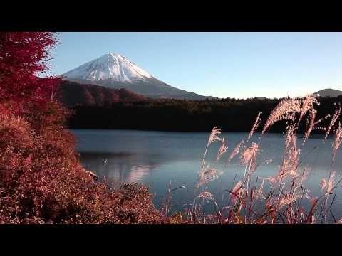 Mt. Fuji from Saiko Lake [西湖より富士を望む/山梨県]