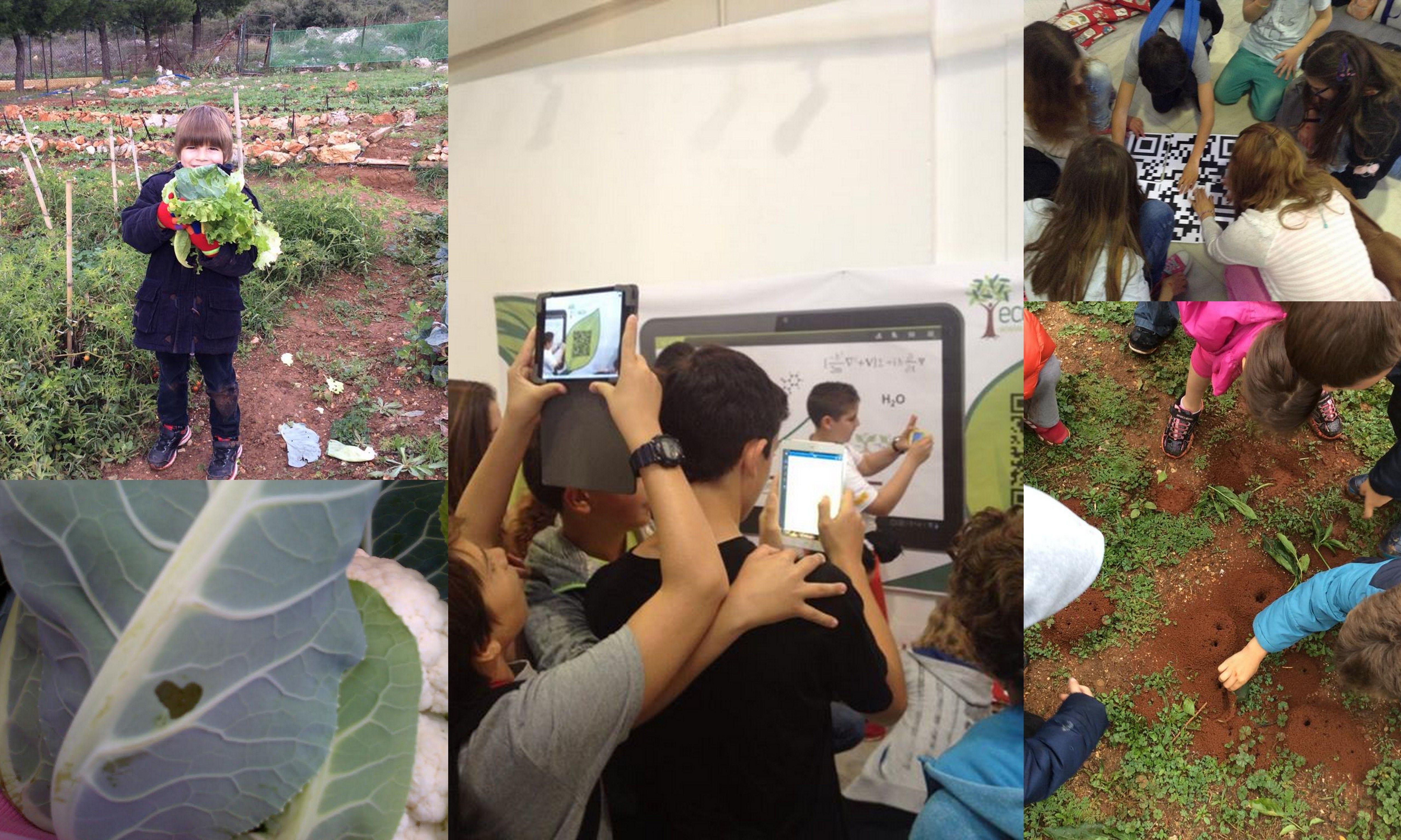 Παίζουμε και μαθαίνουμε: φυσικά και ψηφιακά!