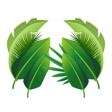 Plant Tropical Leaves Plant Clipart Plant Tropical Png Transparent Clipart Image And Psd File For Free Download Tropical Leaves Leaves Plants