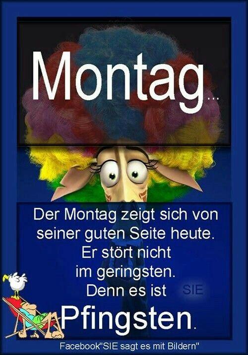 Pin Von Martina Auf Witziges Pfingsten Montag Pfingsten