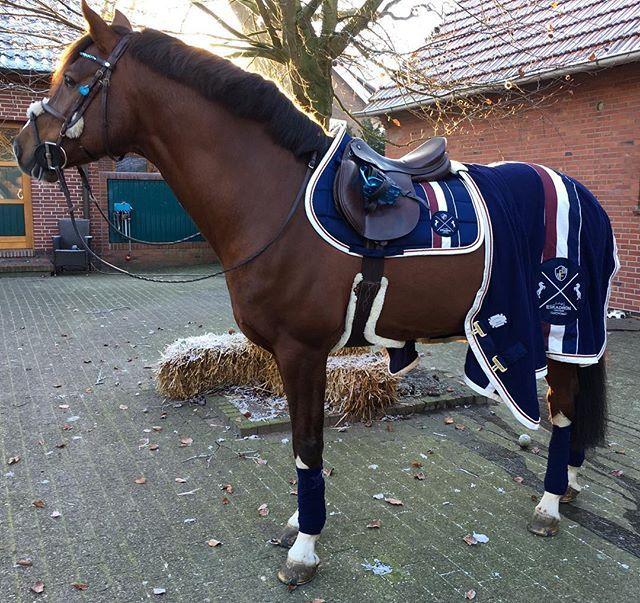 Eskadron Heritage Just Blue Eskadronoutfits Eskadron Heritage Equestrian Equestrianlife Horses Equestrian Outfits Horses Equestrian