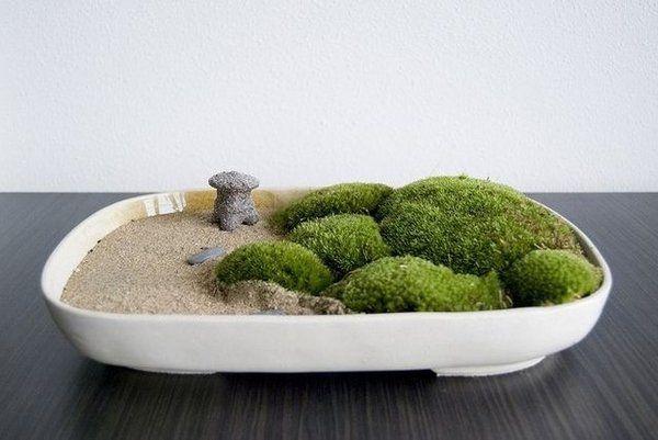 DIY tabletop zen garden ideas how to design rock garden moss sand ...