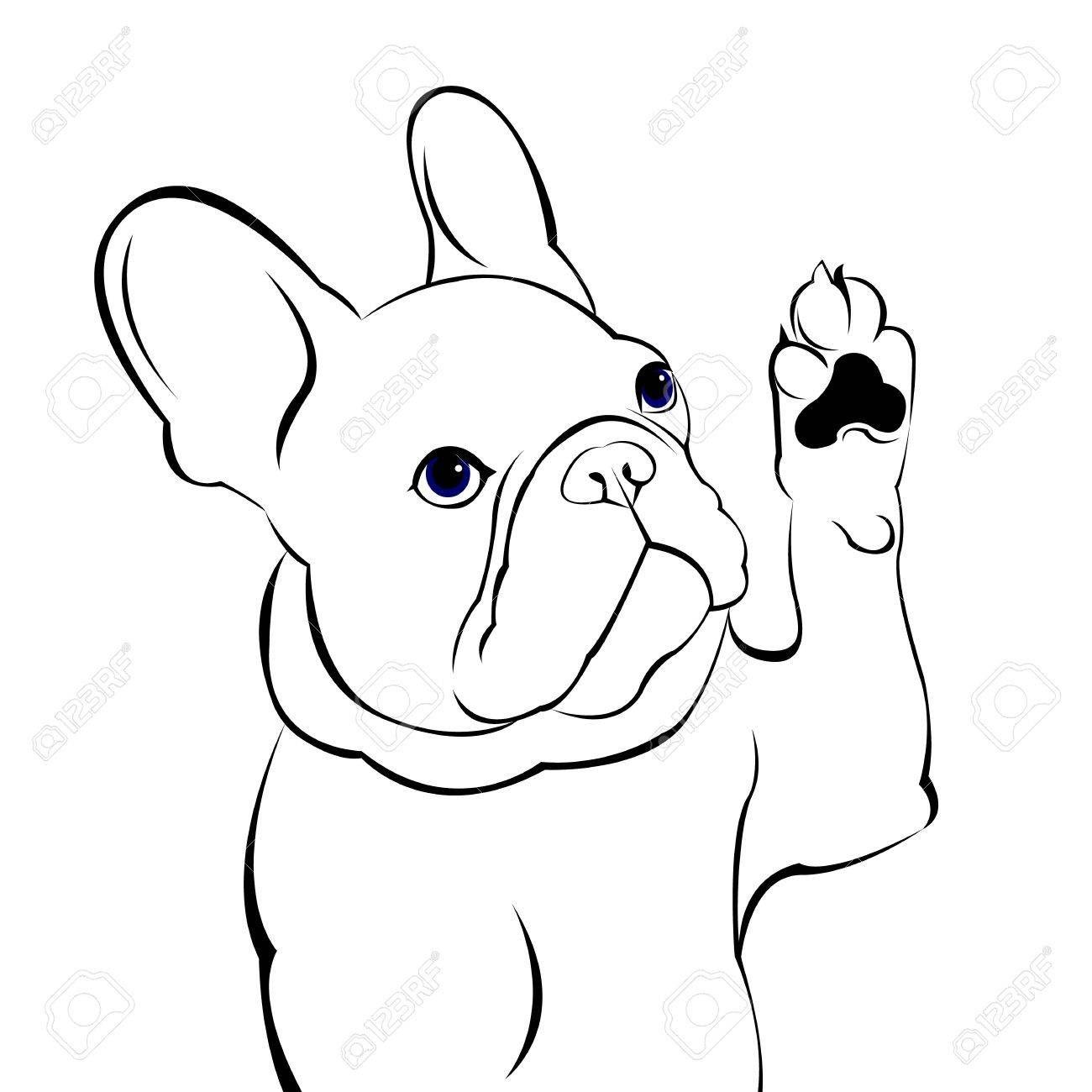 Bulldog Spirit Shirts English Bulldog Drawing English Bulldog Mix Bulldogbesties Bulldogingles B Bulldog Drawing French Bulldog Drawing French Bulldog Art