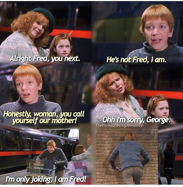 George And Fred Harry Potter Funny Fred And George Weasley Weasley Twins