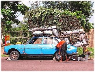 Transport Africa style. Fresh cut bundles of cassava leaves almost overwhelm a four-door sedan. Almost - it did manage to get this far - and after the flat is fixed, it'll continue on its way.  Busy city markets are waiting for their deliveries!  J'vois nice Africa! at duturist.com