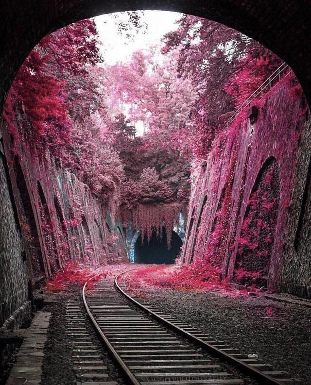 Abandoned Train, Abandoned Train Station
