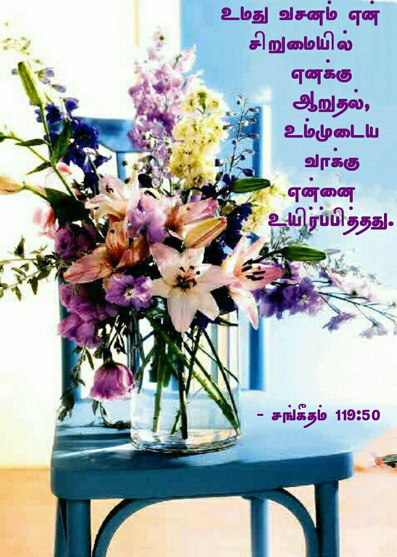 Pin by Tamil mani on Tamil Bible Verse Wallpapers Psalms