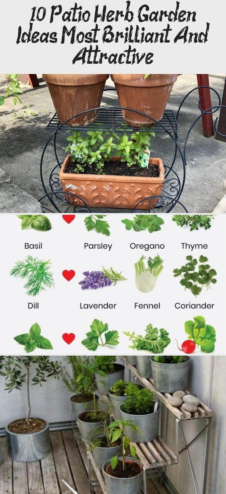 10 Patio Herb Garden Ideas Most Brilliant And Attractive In 2020