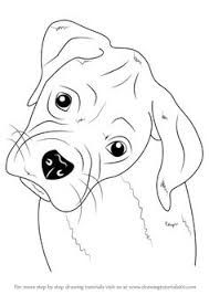 Image Result For Boxer Dog Face Coloring Page Dog Face Drawing