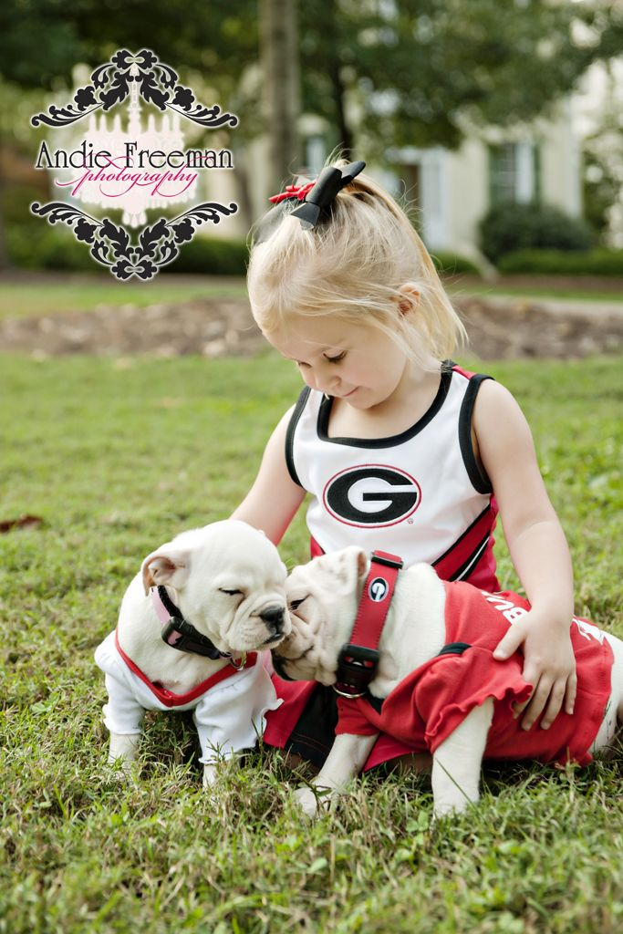 Little Girl With English Bulldog Puppies University Of Georgia