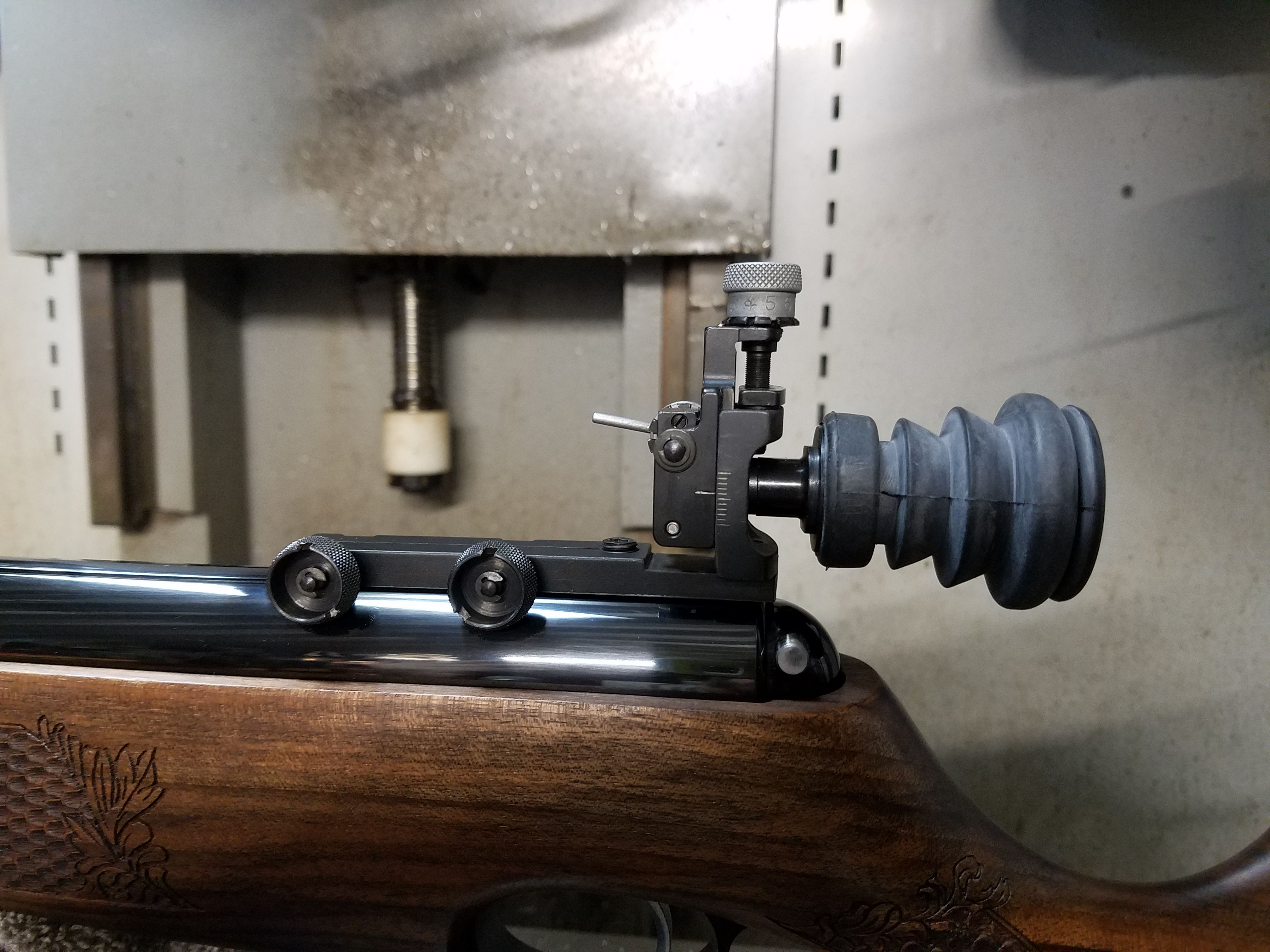 Can't Let Go of My Wanting Iron Sights ( TX 200 ) - Airgun