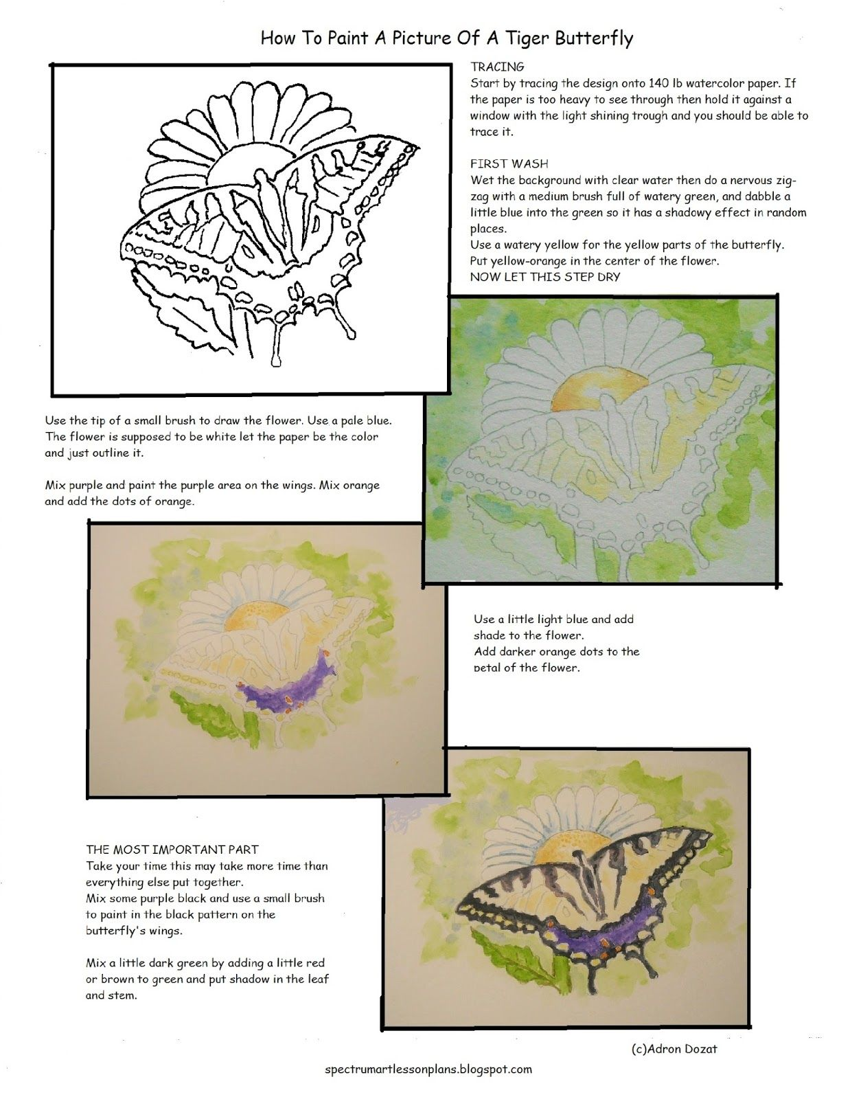 How To Paint A Picture Of A Tiger Butterfly Worksheet