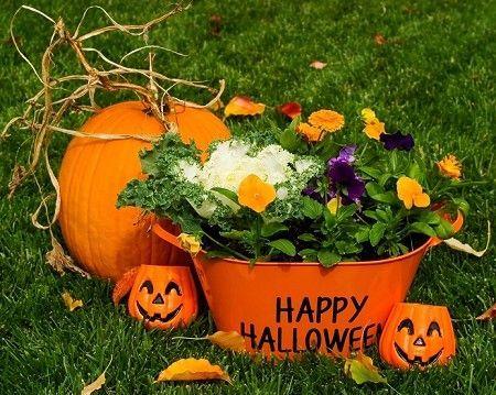 Perfect Halloween Planters   DIY Idea For Outdoor Halloween Decorations