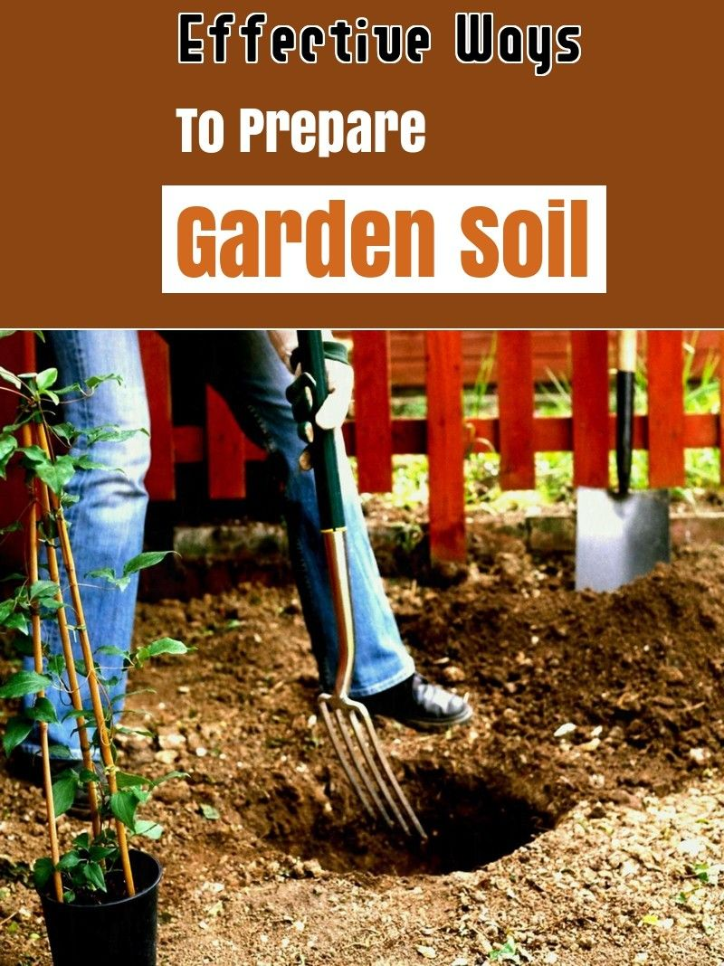 7c5e1788a52d92963bf4d6c1b7cce592 - How To Prepare Soil For Next Year Gardening