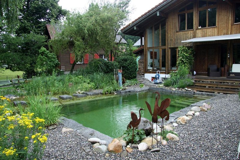 A blend of formal and natural elements are combined to - Swimming pools made to look like ponds ...