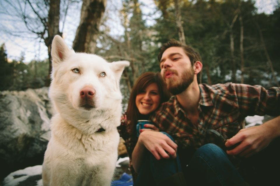 12 Dogs Hilariously Ruining Engagement Photos Dogs