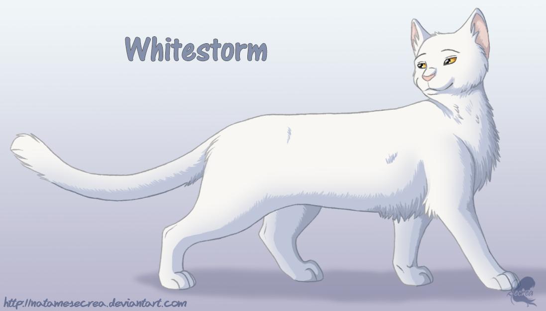 Výsledek obrázku pro warriors cats whitestorm