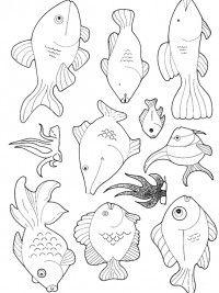 kleurplaten vis topkleurplaat nl in 2020 vissen