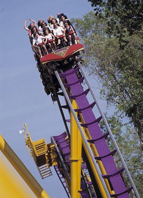 Thrillnetwork Com Busch Gardens Williamsburg Busch Gardens Theme Parks Rides