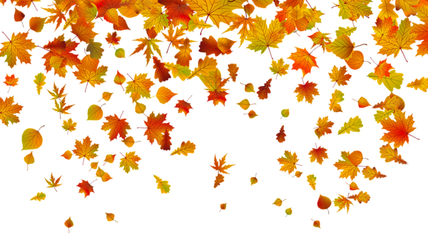Transparent Fall Leaves Png Clipart Image Herbst Clip Art Herbstlaub Hintergrund