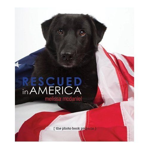 Http Www Thephotobooks Com Millions Of Pets Are Euthanized In Us Shelters Each Year This Photo Book Profiles Rescued Dog Dog Books Rescue Dogs Homeless Dogs