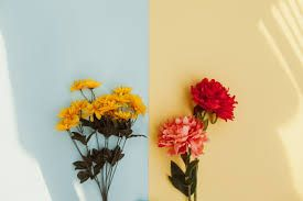 Element of Design: Color. This photograph shows two colors, yellow and blue. Yellow is a warm color and blue is cool color. On top of those two colors are flowers that are both warm colors.