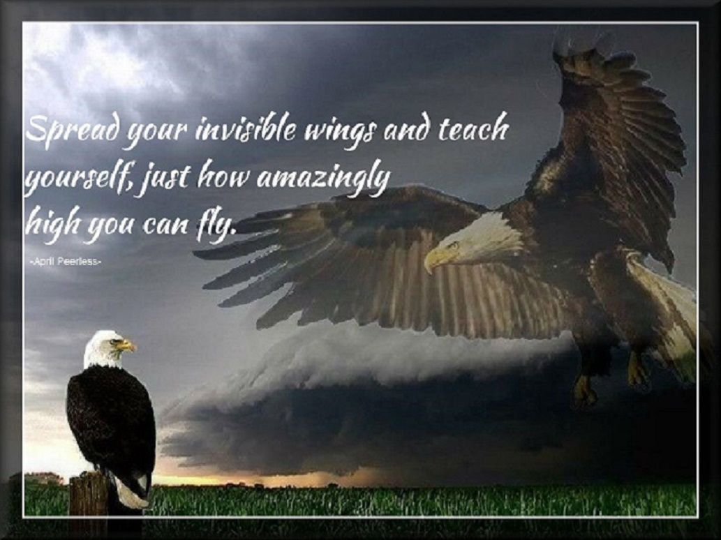 Native American Sayings And Quotes The Leap Of Faith Jpg Animal Spirit Guides Bald Eagle Spirit Animal Totem