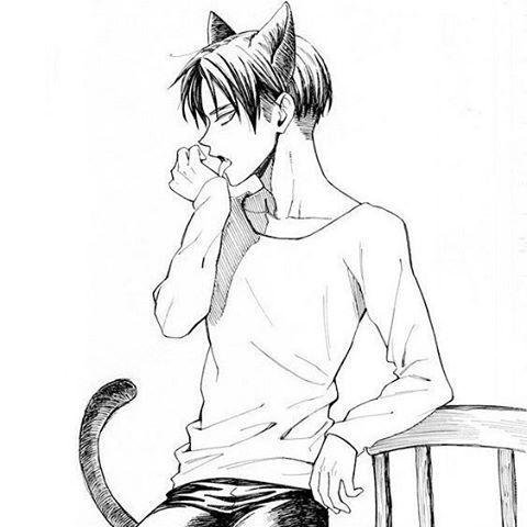 Szeretlek, cicám! 🐱 [Ereri]
