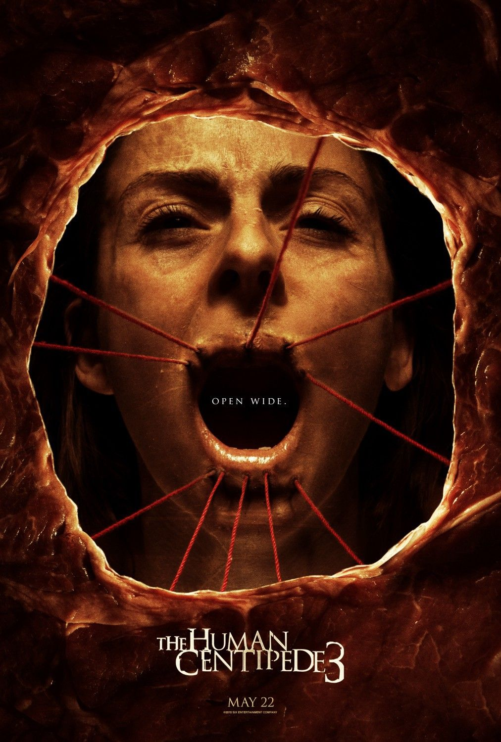 The Human Centiped 3 Streaming : human, centiped, streaming, Human, Centipede, (Final, Sequence), #id1588869194, Movie, Posters,, Centipede,, Horror