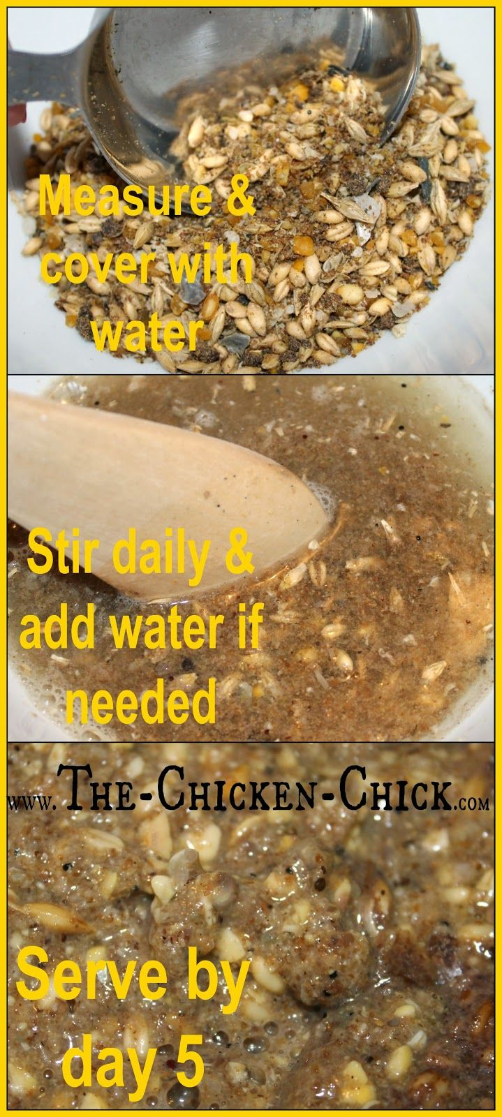 fermented chicken feed why u0026 how in 3 easy steps backyard