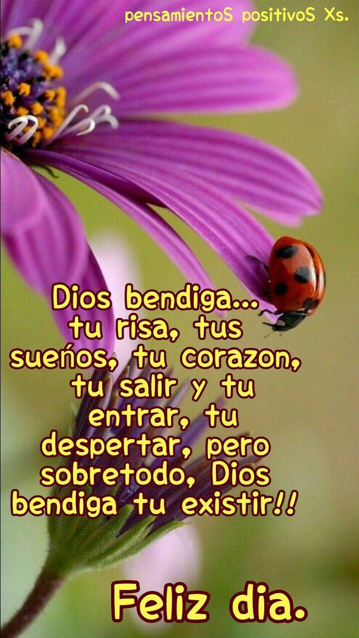 Bendecido Tu Dia Hola Buenos Dias Frases Abrazo De Buenos Dias Saludos De Buenos Dias Nunca es demasiado tarde para comenzar. bendecido tu dia hola buenos dias