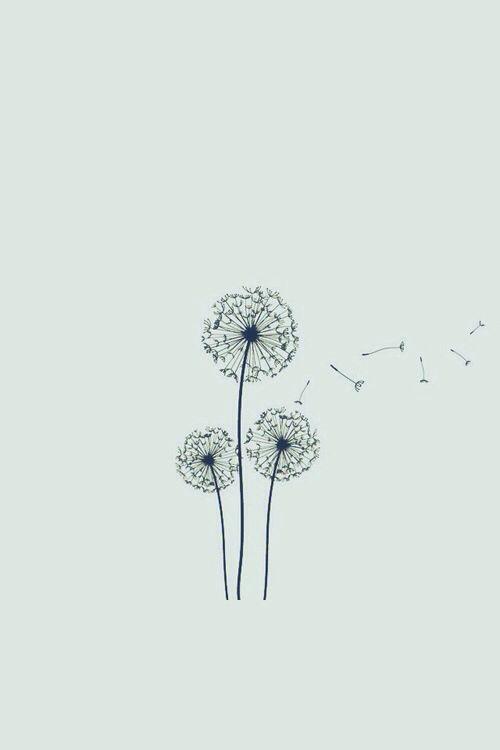 Flowers shared by little shy ariel on We Heart It