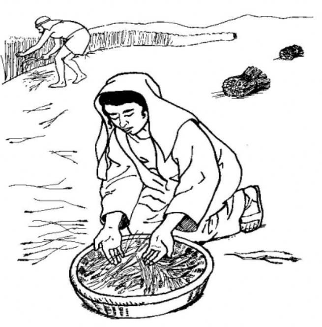 Ruth Coloring Page Ruth Bible Lesson Bible Coloring
