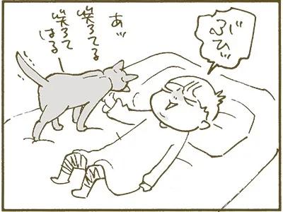 くるねこ大和 くるねこ大和 ねこ 猫