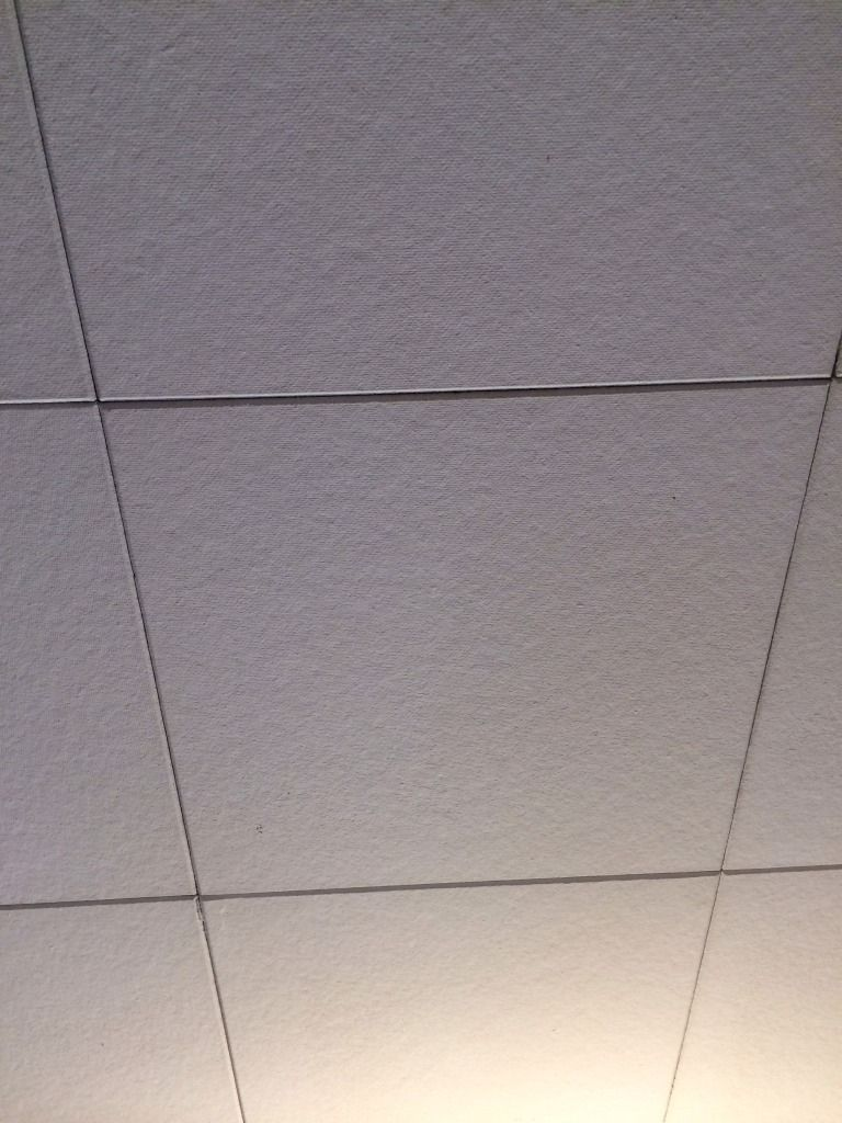 Do old drop ceiling tiles contain asbestos http do old drop ceiling tiles contain asbestos dailygadgetfo Choice Image