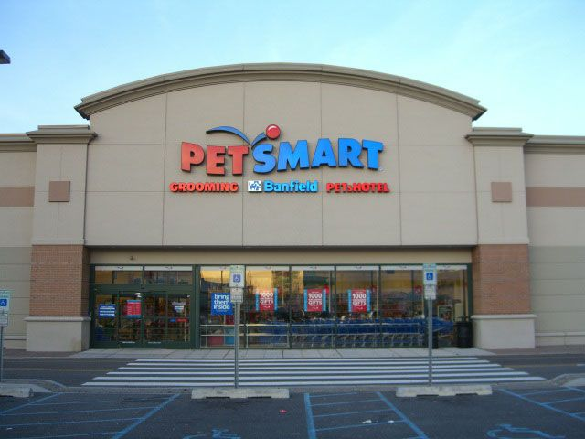 Petsmart Recalls Simply Nourish Biscotti Treat That Expires On February 16 Because Of Mold Http Justmansbestfriendf Petsmart Doggie Day Camp Pet Smart Store