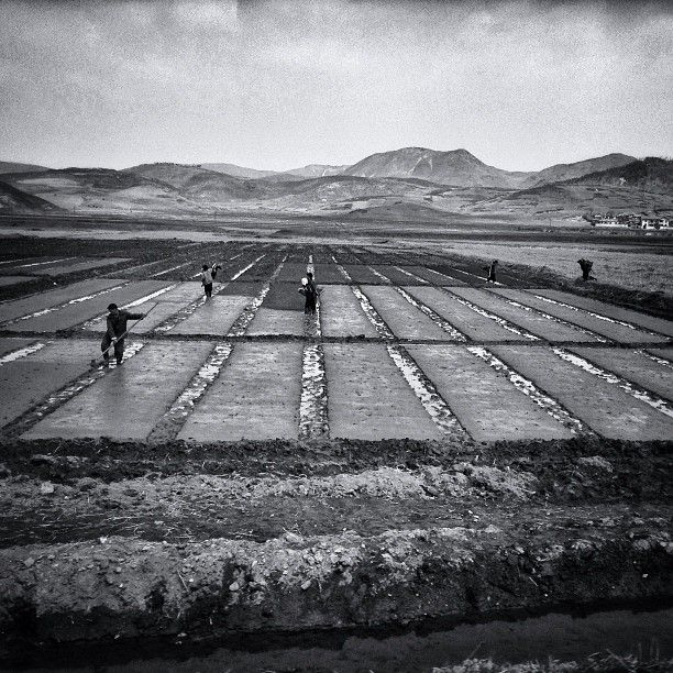 David Guttenfelder - North Korea