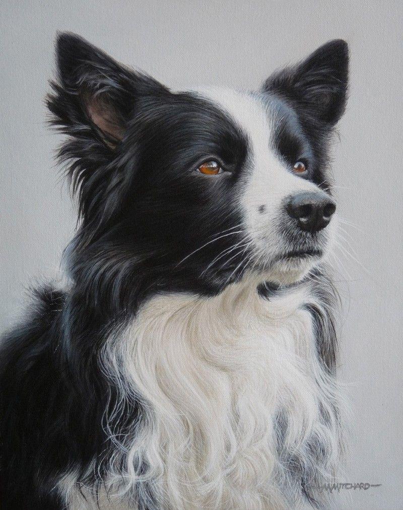 marc mitchard Canine art, Dog paintings, Dog portraits