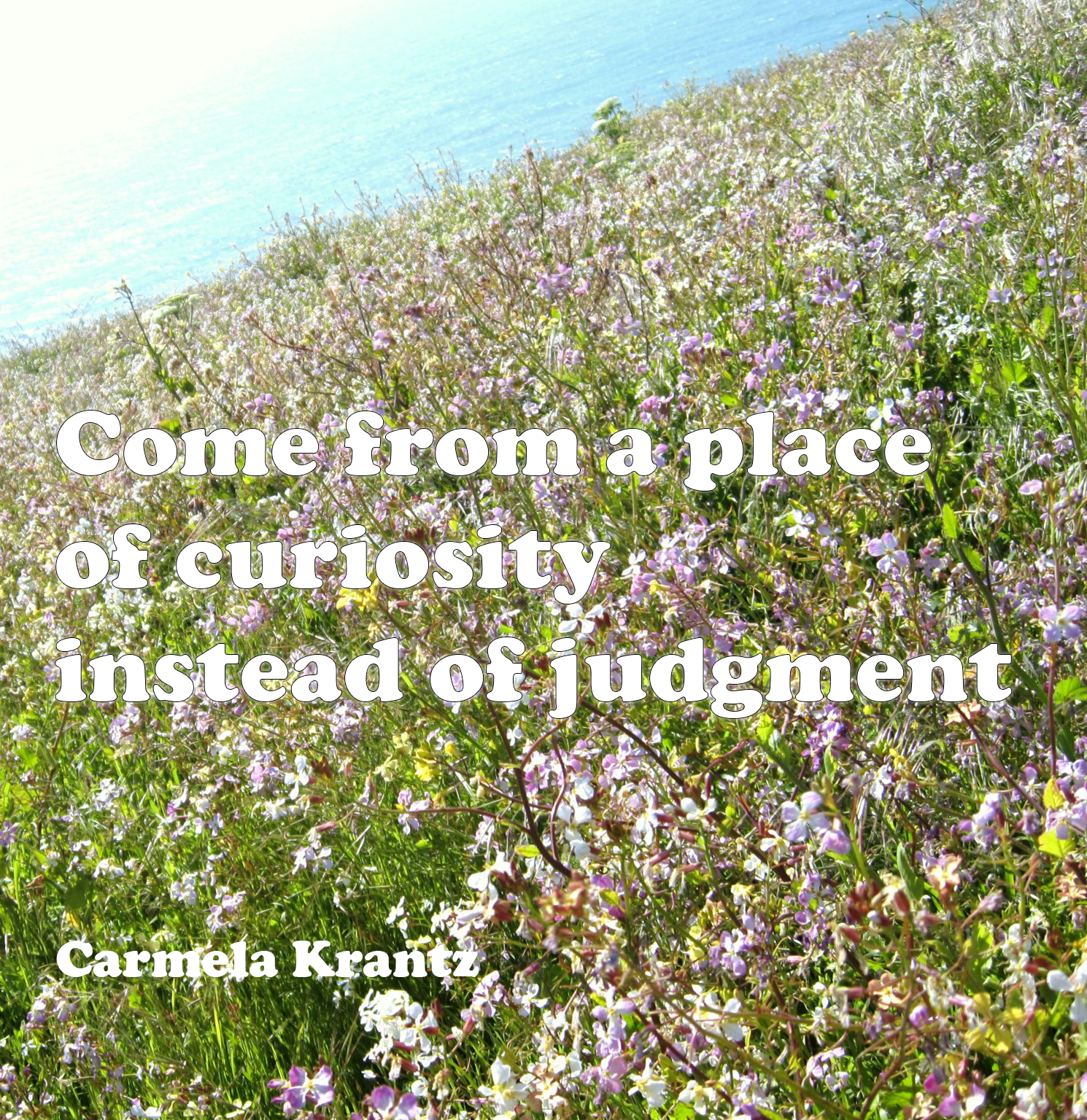 """Come from a place of curiosity instead of judgment"" - Carmela Krantz"
