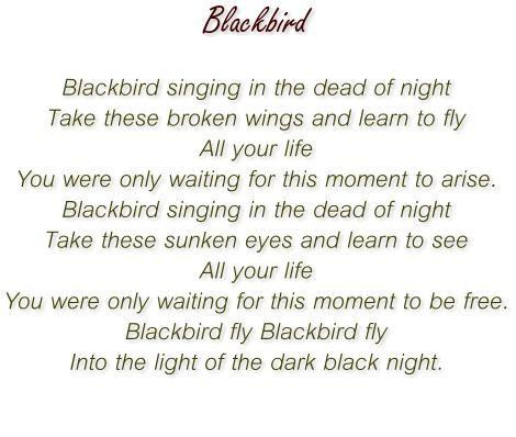 Songtext von Paul McCartney - Blackbird Lyrics
