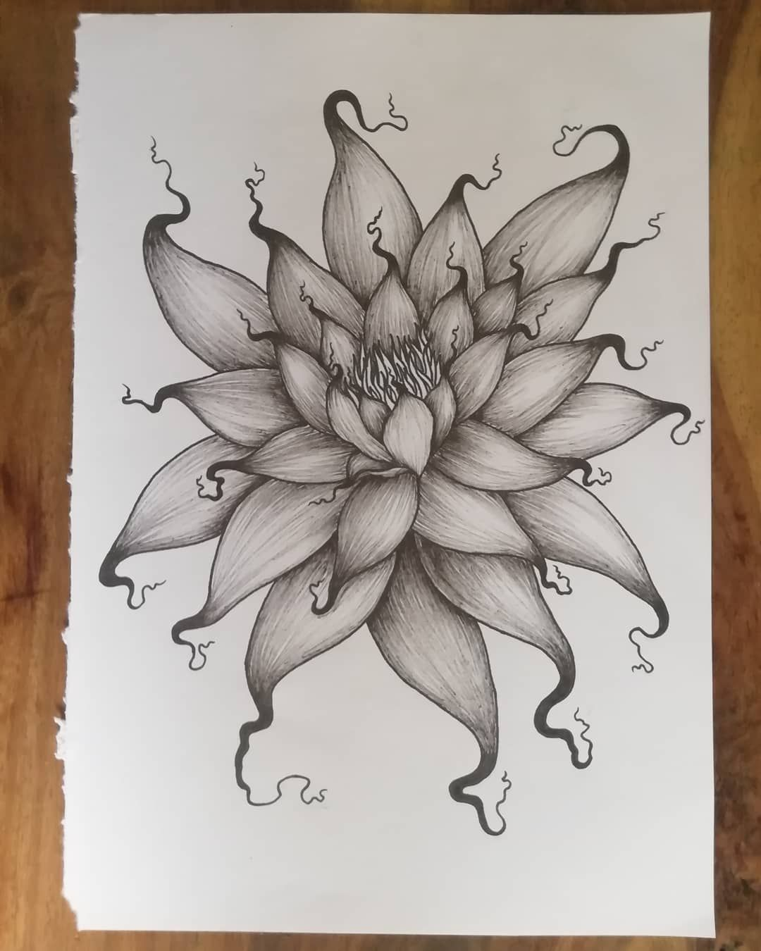 Fiore Di Loto Tattoo Disegno.Tattoo Disegni Blackandwhite Biancoenero Blackmoon Lunanera