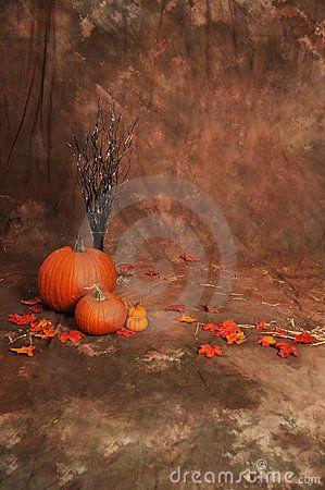 Fall Backdrop Idea Fall Backdrops Halloween Photography Backdrop Halloween Photography