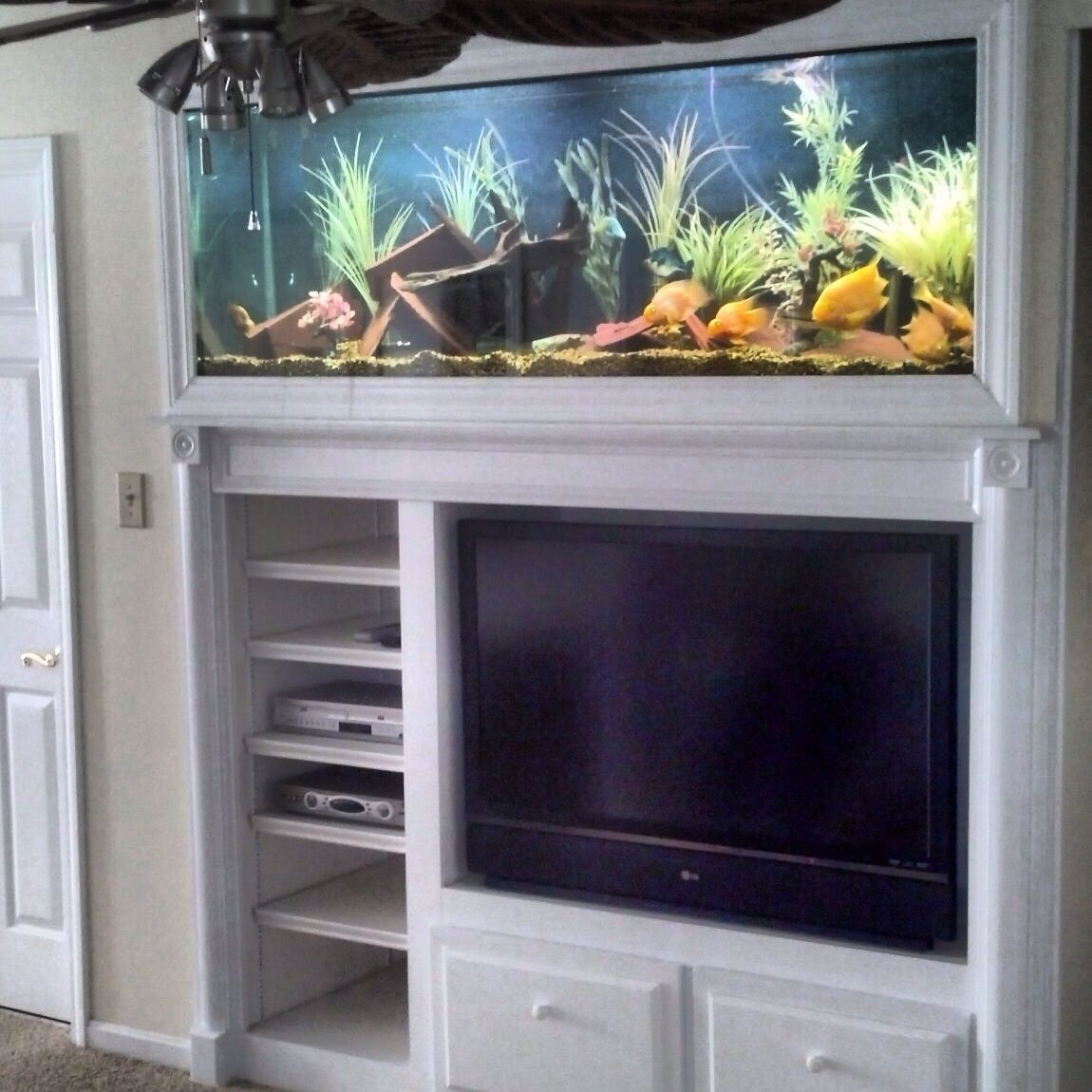 Custom built-in aquarium here in Louisville, ky. Filled ...