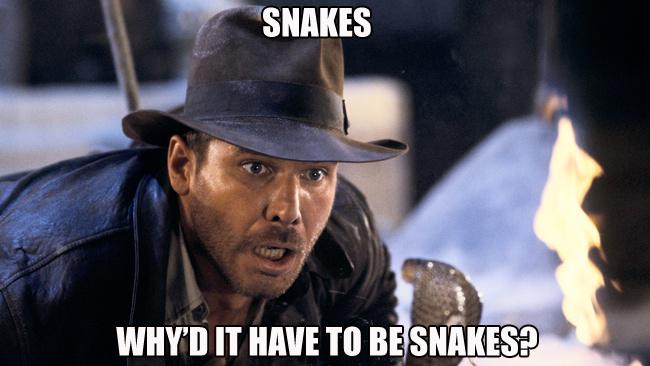 7c69d6c2fd7631bf4587307a2f8610dd i concur fortune and glory pinterest snake meme and indiana